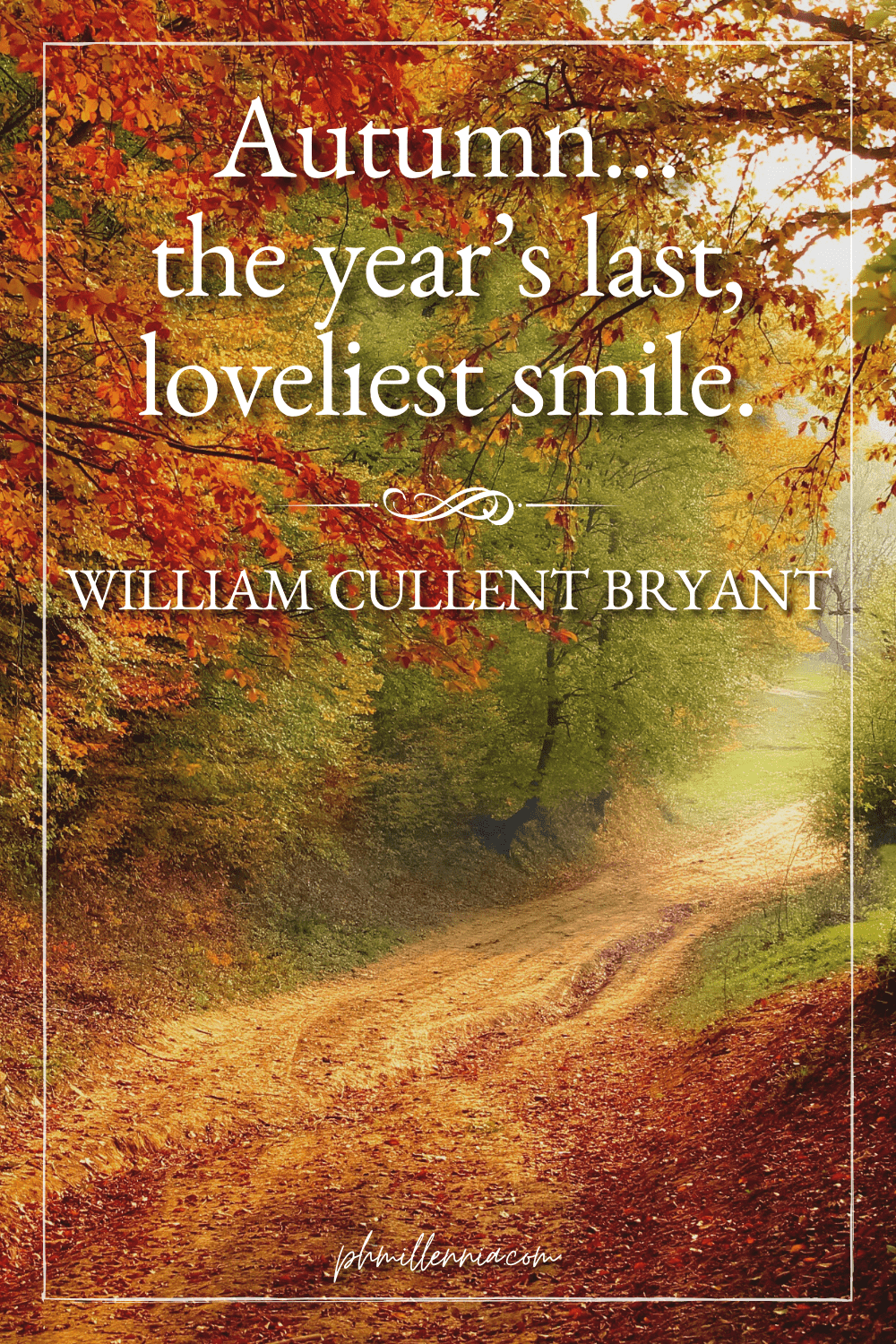 A graphic featuring an autumn quote/fall saying over an image of a woodland path through a forest full of trees in autumn/fall