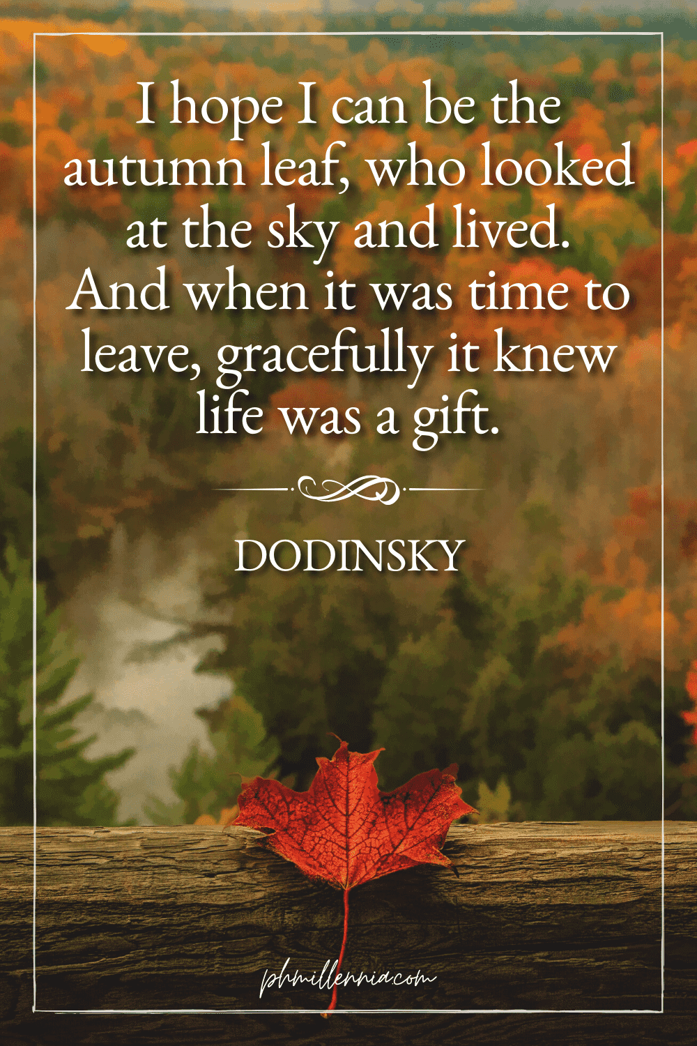A graphic featuring an autumn quote/fall saying over an image of a single red autumn/fall leaf on a wooden beam, backdropped by a forest/woodland landscape in autumn/fall colors