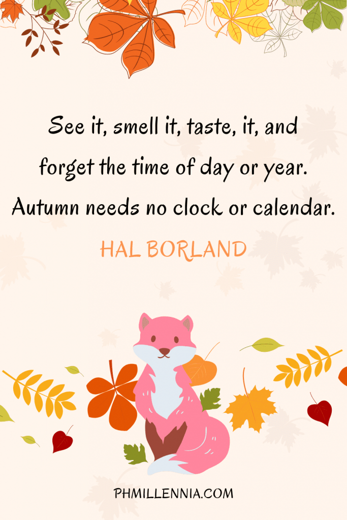 A graphic featuring an autumn quote/fall saying over an image of a fox and autumn/fall leaves