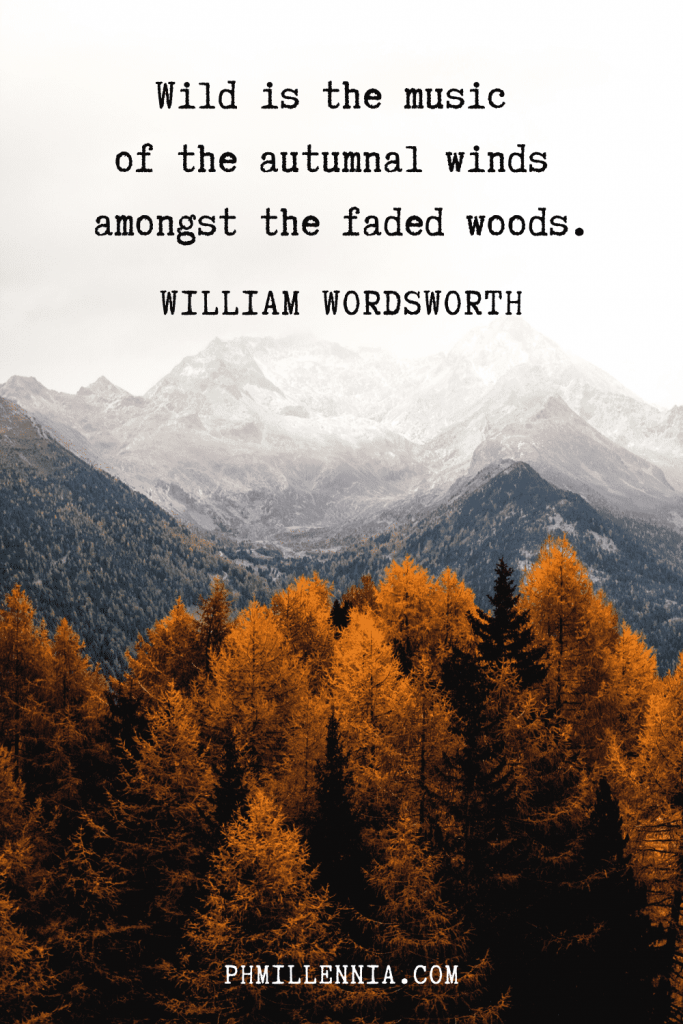 A graphic featuring an autumn quote/fall saying over an image of woods and forests with trees wearing autumn/fall colors backdropped by foggy mountains