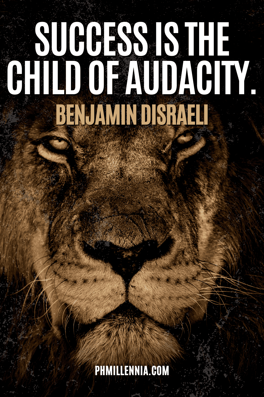 A graphic containing text on an image of a lion
