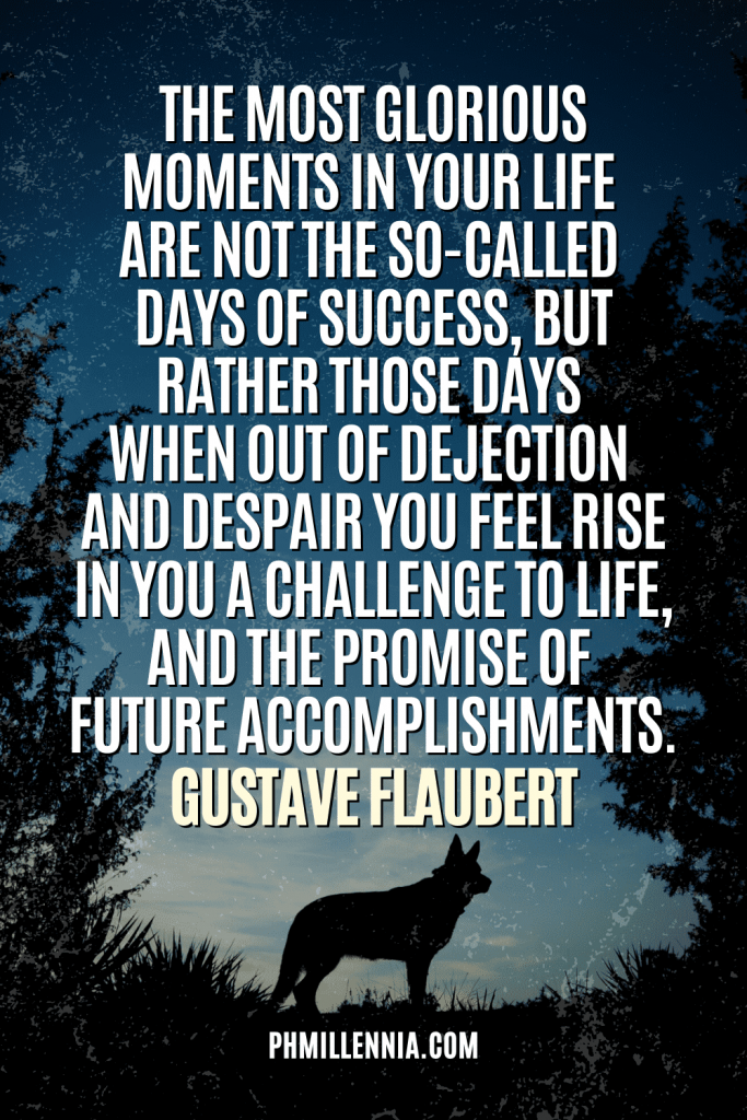 A graphic containing text on an image of a silhouette of a wolf set against the sky