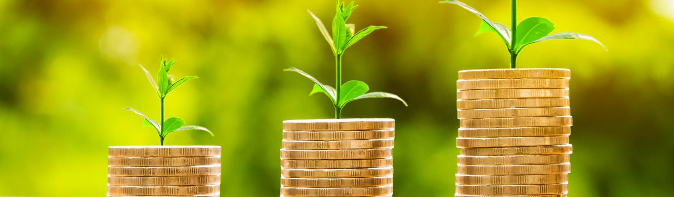 Three stacks of coins arranged from shortest to tallest, with plants sprouting on the top